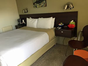 Room No. 5 offers 1 Queen bed. There is seating in the room. It offers a great view of Morro Rock.